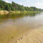 Пляж на реке Ветлуга